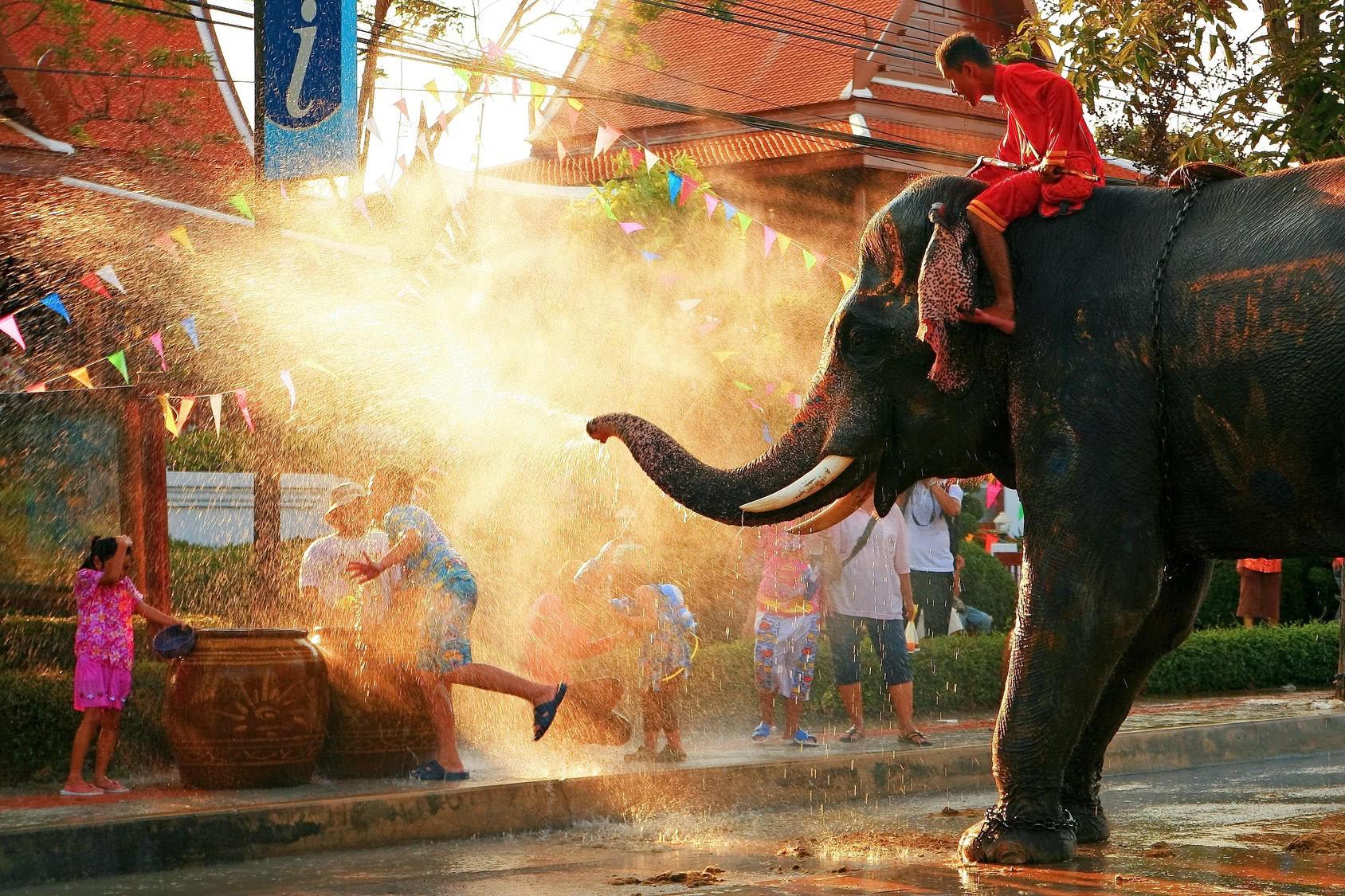 Songkran Festival mit Elefant
